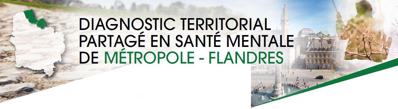 Metropole flandres
