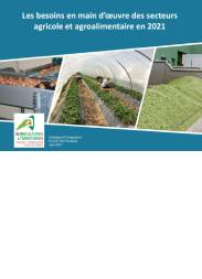 Ecostrategique-Besoin-main-oeuvre-agricole-agroalimentaire